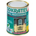 SOKRATES email professional LESK 0,7 KG