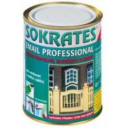 SOKRATES email professional